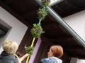 palmbuschen-binden_018