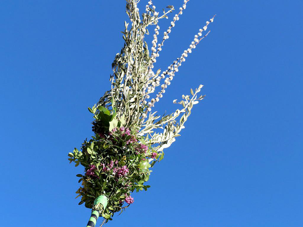 Palmbuschen selber binden in Mieming. Foto: Knut Kuckel
